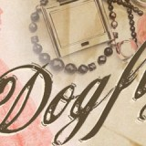 web-dogfight-interior-banner